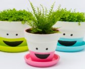 7 Amazingly Decorated Diy Flower Pots