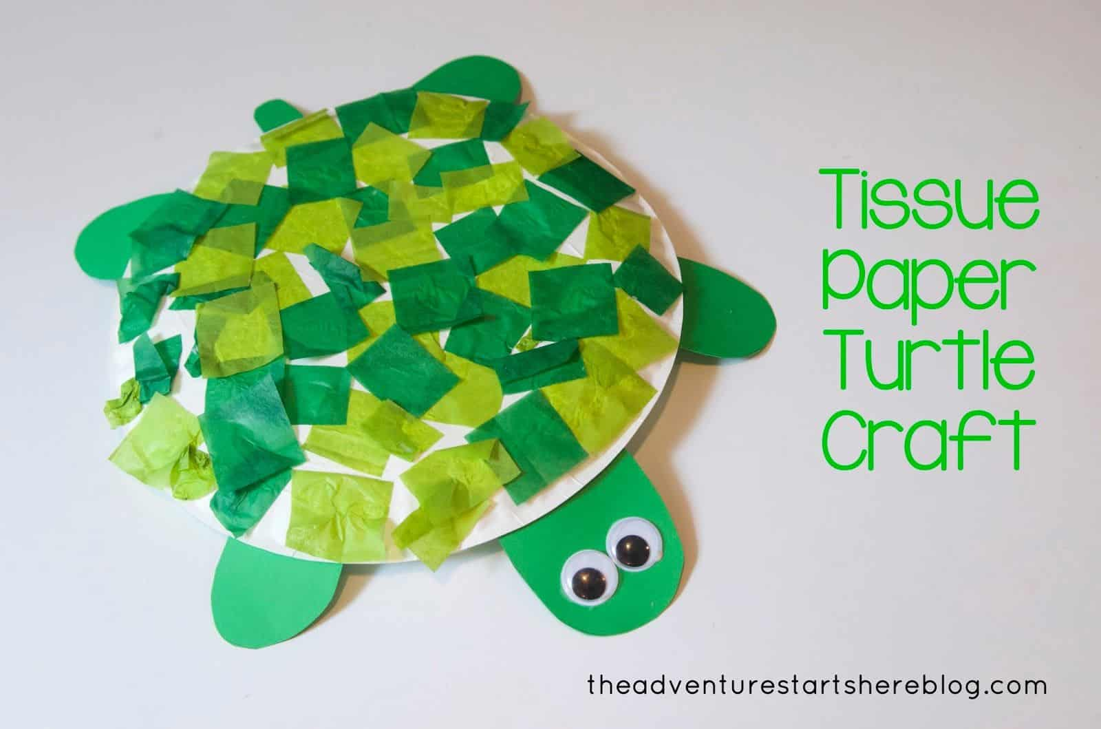 5 Fun Turtle Crafts Diy Thought