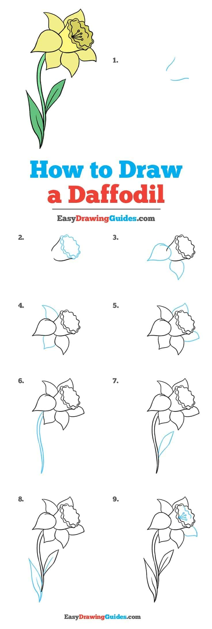 How To Draw Flowers Diy Thought