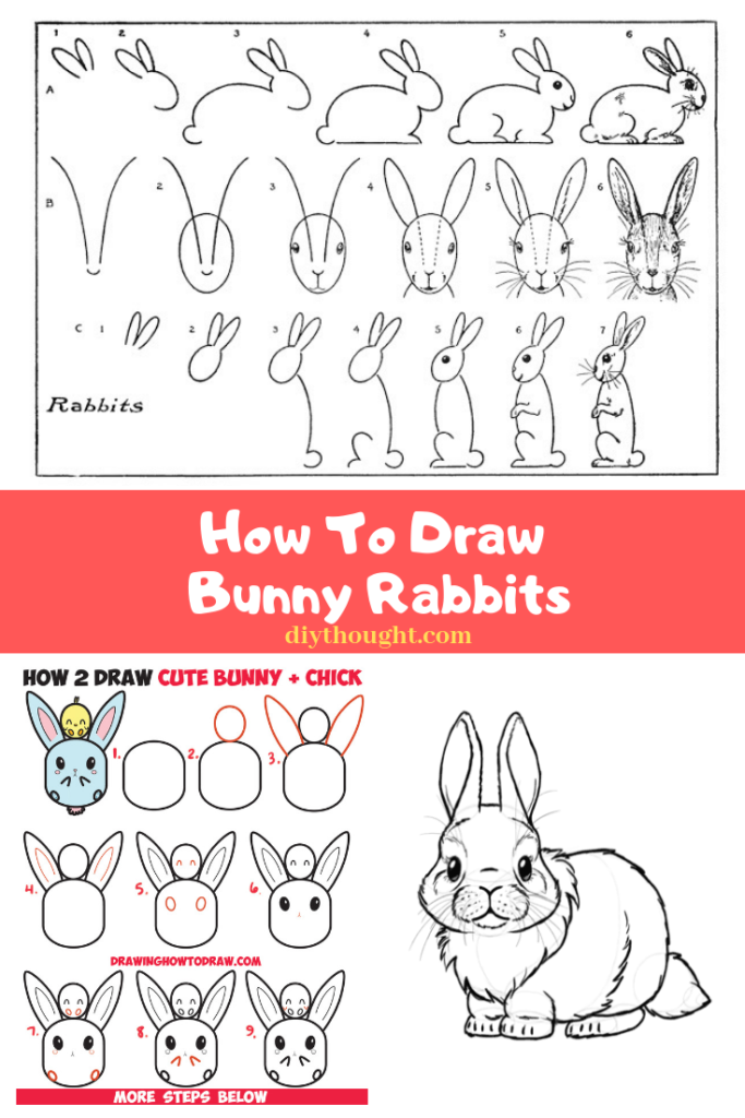 how to draw bunny rabbits