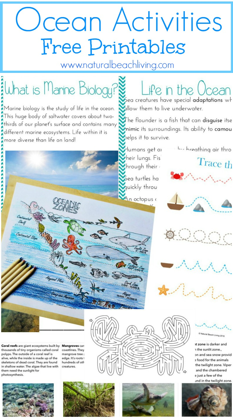 ocean-activities-printables