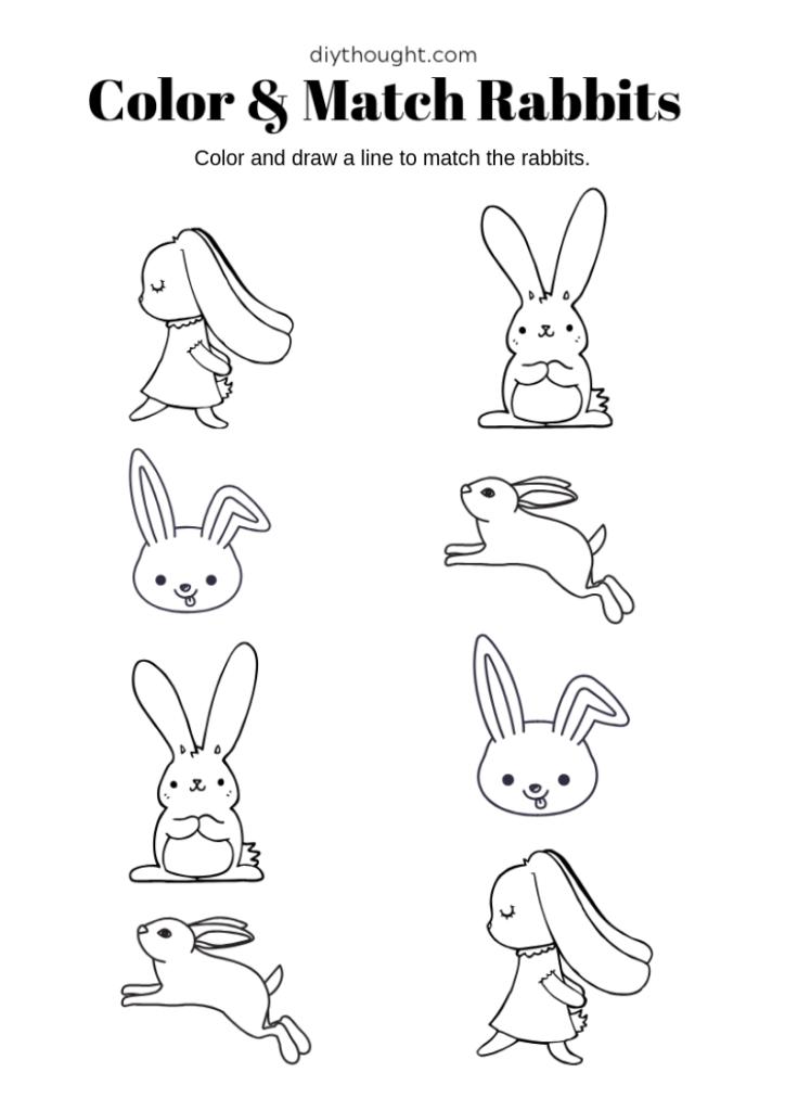 rabbit matching and coloring worksheet