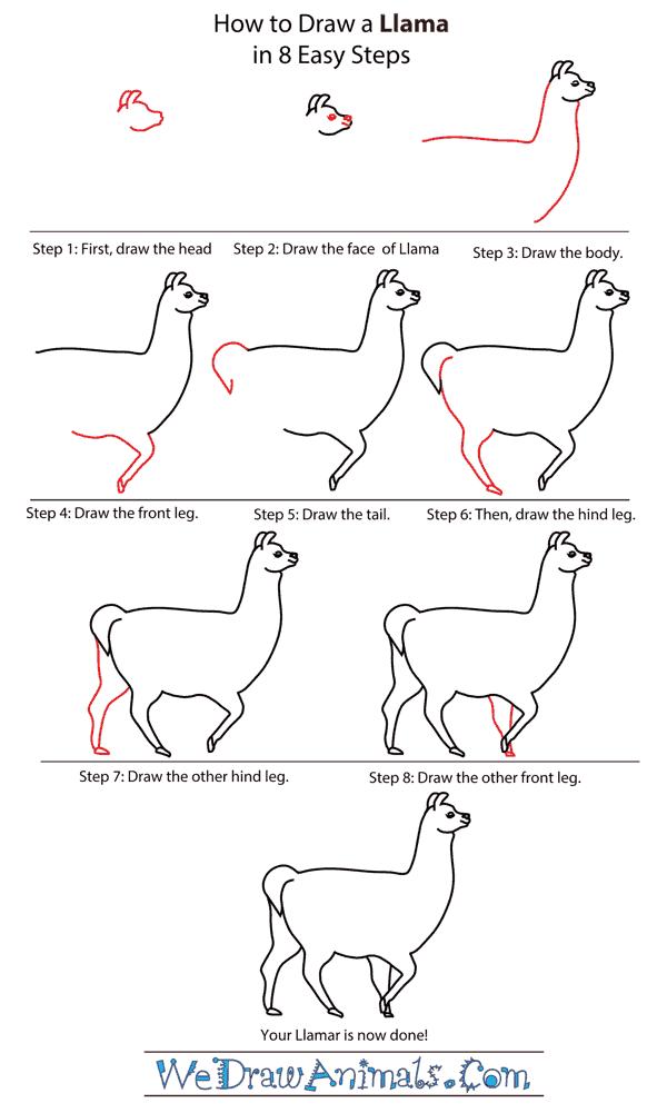 llama drawing tutorial