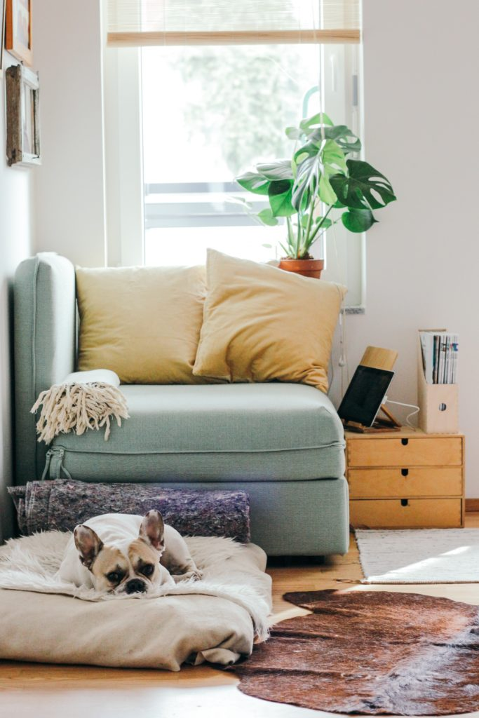 Frugal Ways to Refresh & Restyle Your Living Room