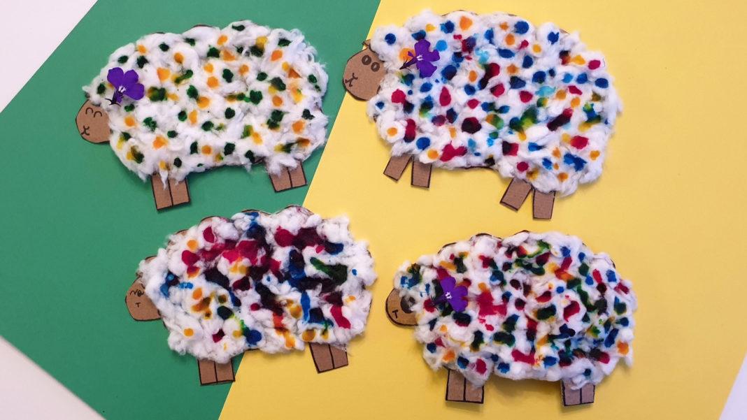 woolly sheep craft