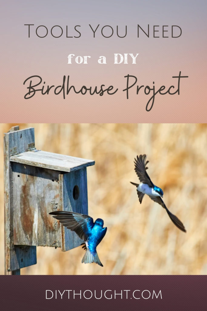 Tools You Need for a DIY Birdhouse Project