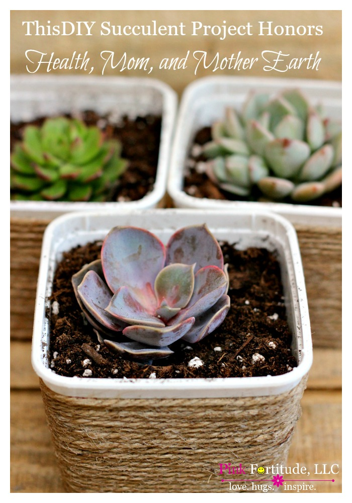 upcycled succlent pot